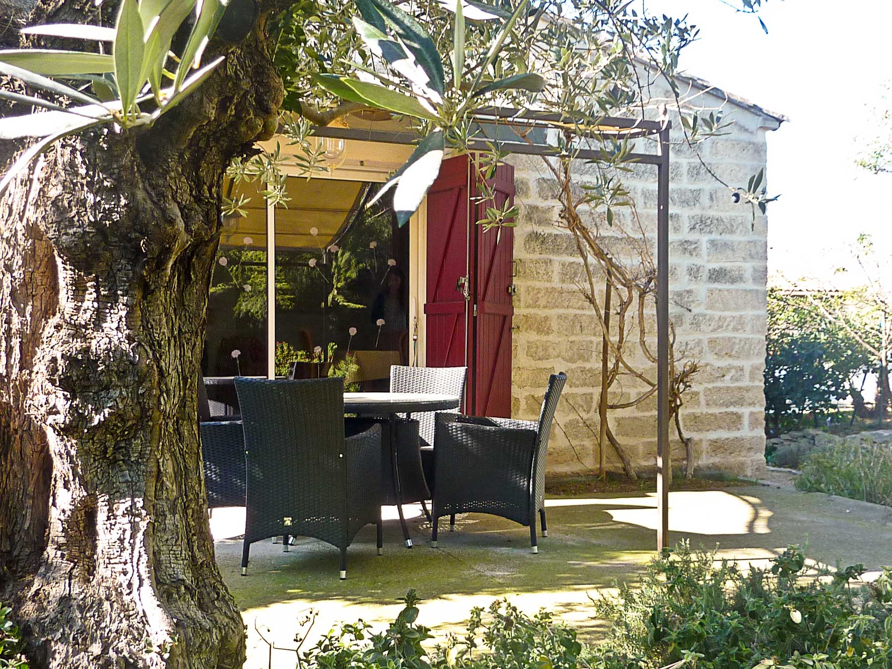 Terrasse sous l'olivier